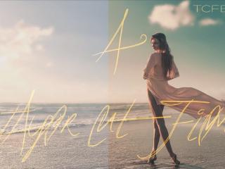 Taylor Cut Films Color Grading Tutorial (LUT Pack)